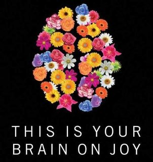 brainonjoy