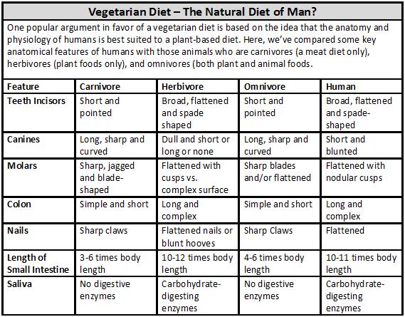herbivore_chart_vegetarian_diet